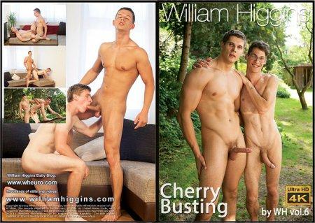 Cherry Busting by WH vol.6 Full HD Gay DVD 2018