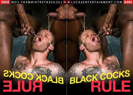 Black Cocks Rule 2018 full HD Gay DVD