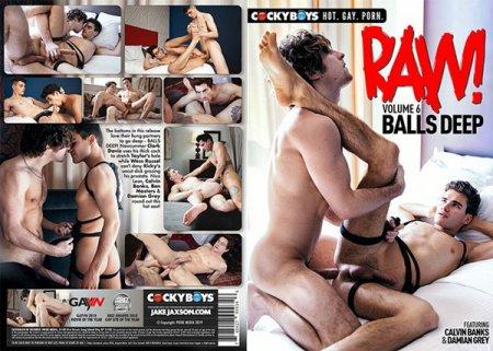 RAW! Vol. 6 Balls Deep 2019 Full HD Gay DVD